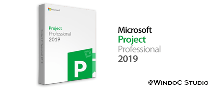Project Pro Plus 2019